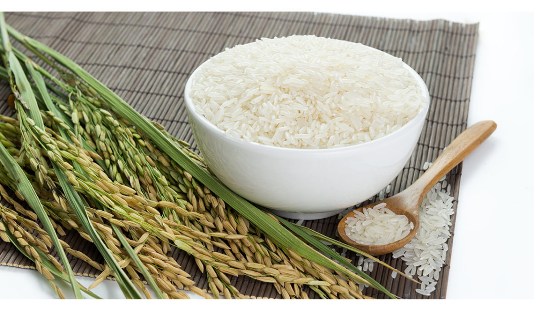 ¿Es el arroz una alternativa sin gluten?